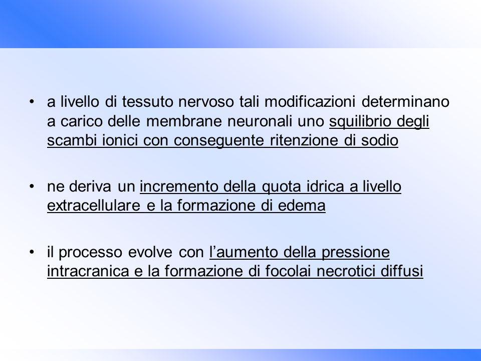a livello di tessuto nervoso tali modificazioni determinano a carico delle membrane neuronali uno squilibrio degli scambi ionici con conseguente ritenzione di sodio