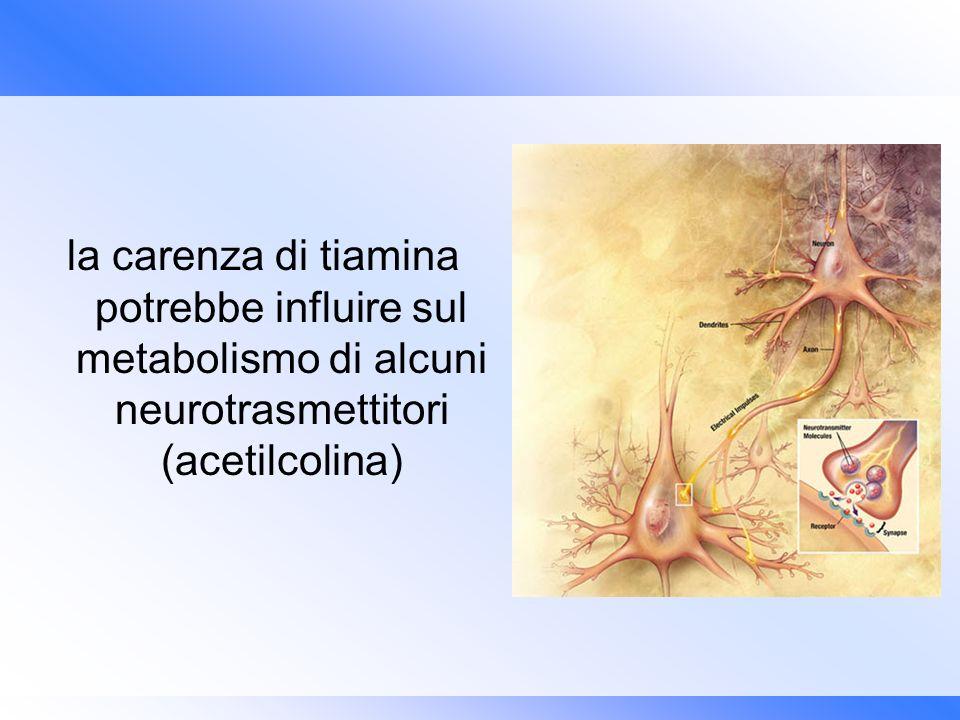 la carenza di tiamina potrebbe influire sul metabolismo di alcuni neurotrasmettitori (acetilcolina)