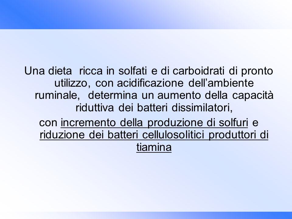 Una dieta ricca in solfati e di carboidrati di pronto utilizzo, con acidificazione dell'ambiente ruminale, determina un aumento della capacità riduttiva dei batteri dissimilatori,