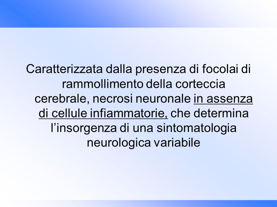 Caratterizzata dalla presenza di focolai di rammollimento della corteccia cerebrale, necrosi neuronale in assenza di cellule infiammatorie, che determina l'insorgenza di una sintomatologia neurologica variabile
