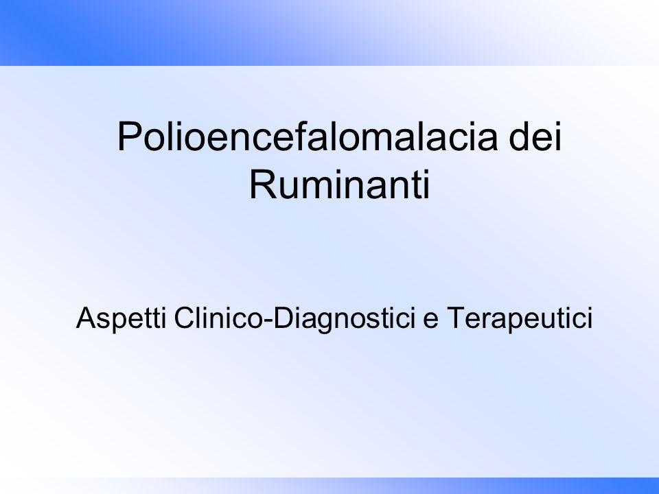 Polioencefalomalacia dei Ruminanti