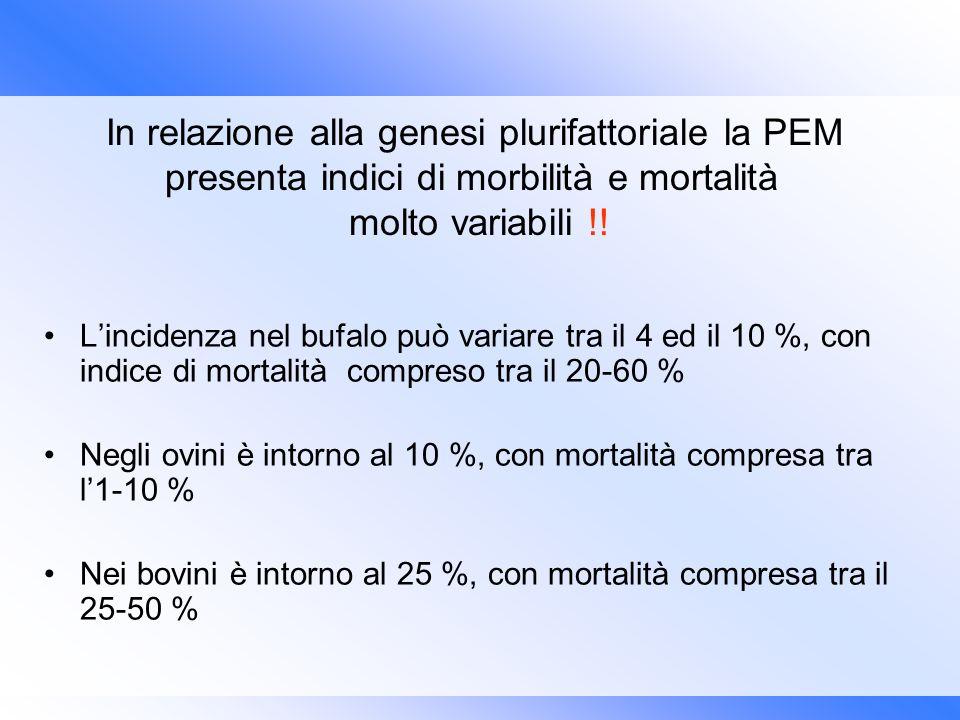 In relazione alla genesi plurifattoriale la PEM