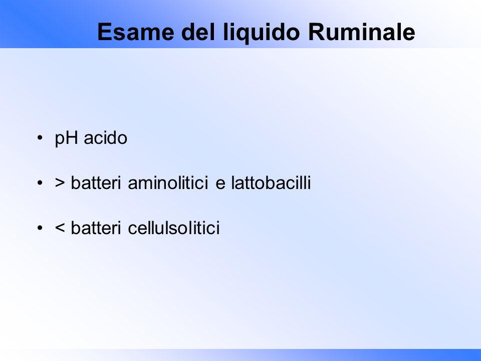 Esame del liquido Ruminale