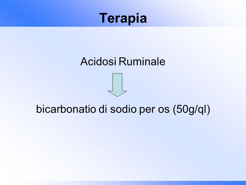 bicarbonatio di sodio per os (50g/ql)