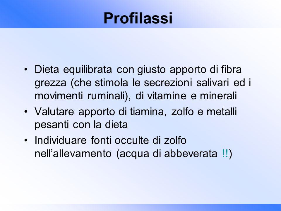 Profilassi Dieta equilibrata con giusto apporto di fibra grezza (che stimola le secrezioni salivari ed i movimenti ruminali), di vitamine e minerali.