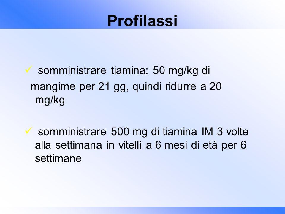 Profilassi somministrare tiamina: 50 mg/kg di