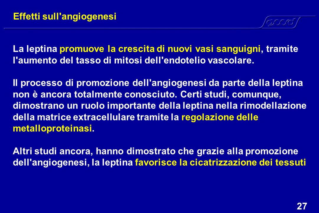 Effetti sull angiogenesi