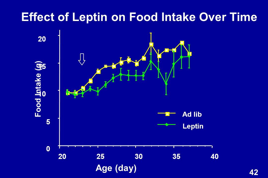 Effect of Leptin on Food Intake Over Time