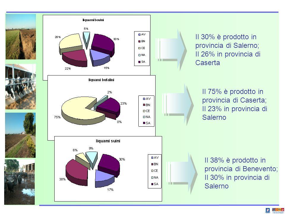 Il 30% è prodotto in provincia di Salerno;