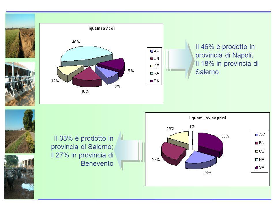 Il 46% è prodotto in provincia di Napoli;