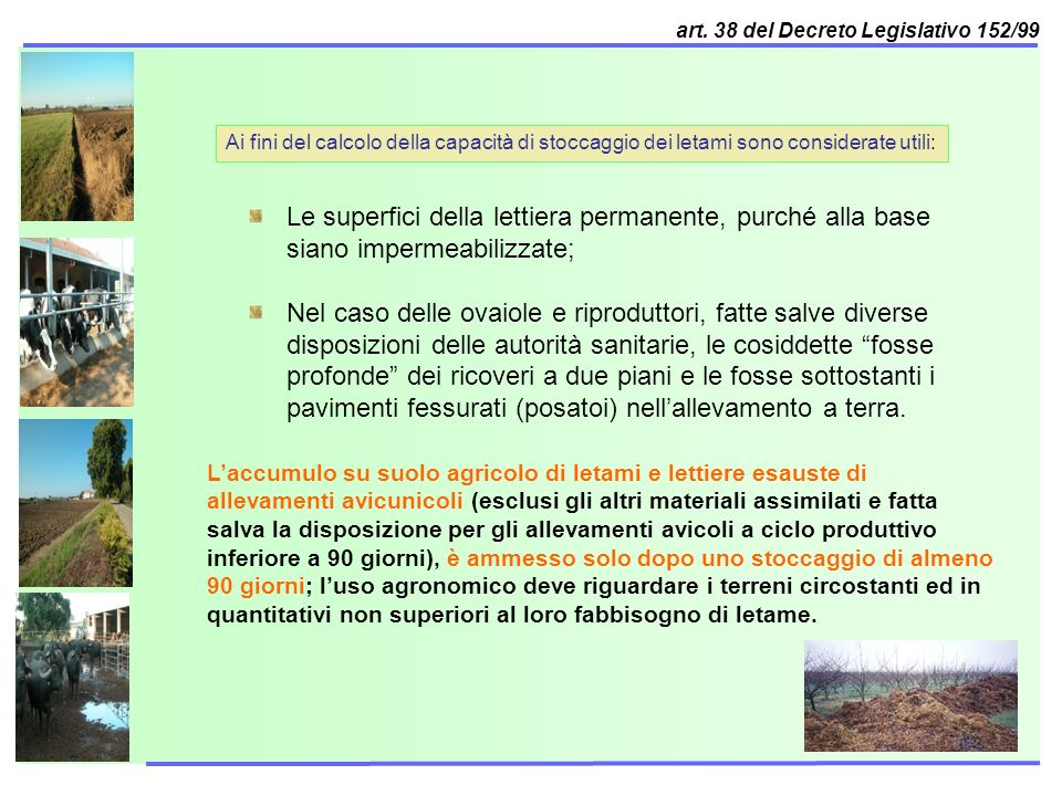 art. 38 del Decreto Legislativo 152/99