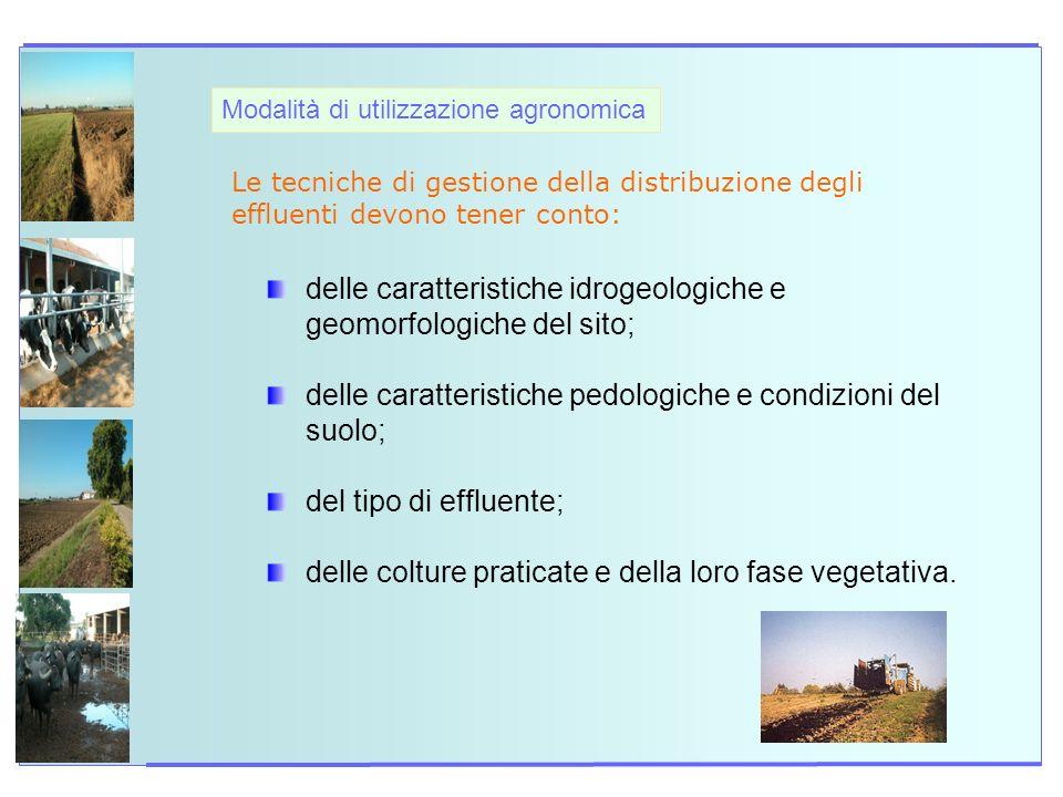 delle caratteristiche idrogeologiche e geomorfologiche del sito;