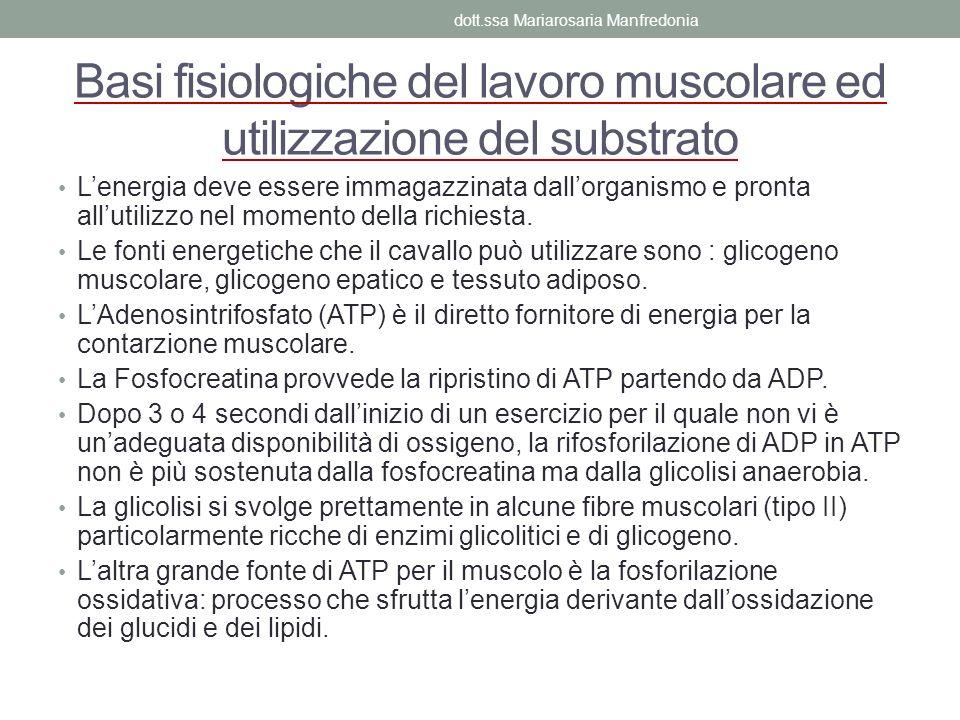 Basi fisiologiche del lavoro muscolare ed utilizzazione del substrato
