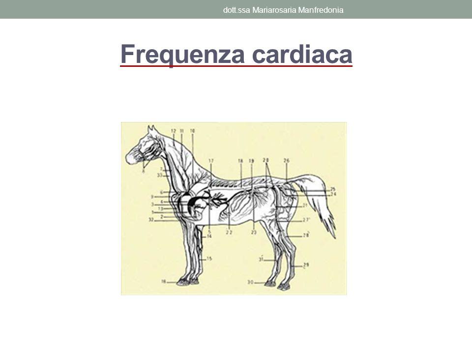 dott.ssa Mariarosaria Manfredonia