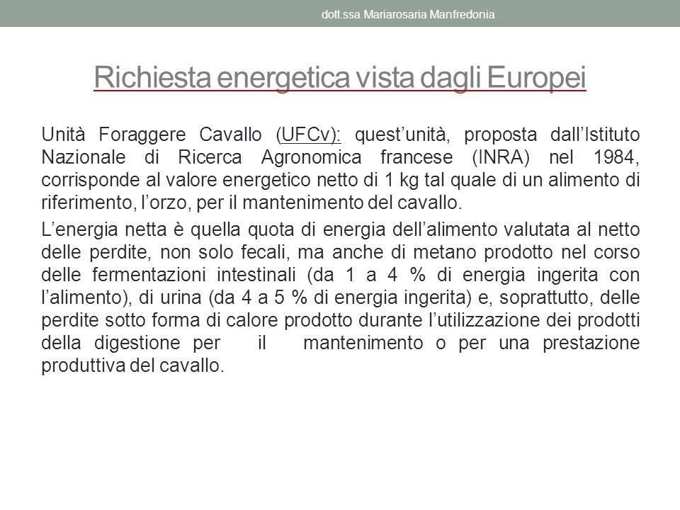 Richiesta energetica vista dagli Europei