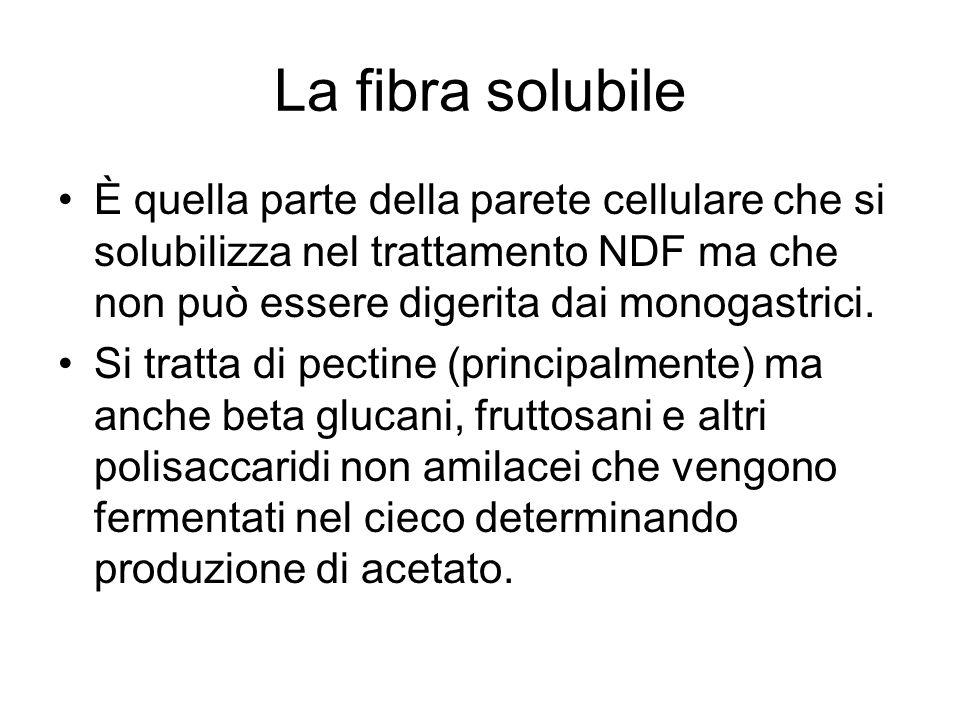 La fibra solubileÈ quella parte della parete cellulare che si solubilizza nel trattamento NDF ma che non può essere digerita dai monogastrici.