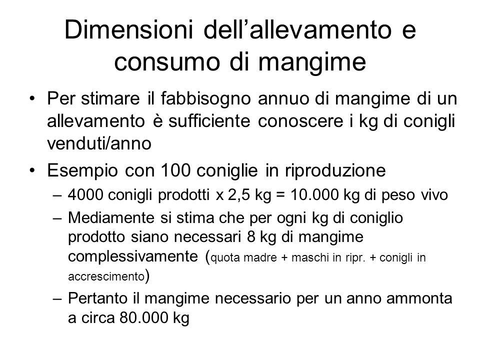 Dimensioni dell'allevamento e consumo di mangime