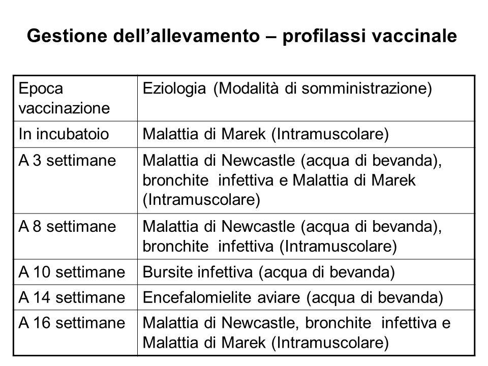 Gestione dell'allevamento – profilassi vaccinale