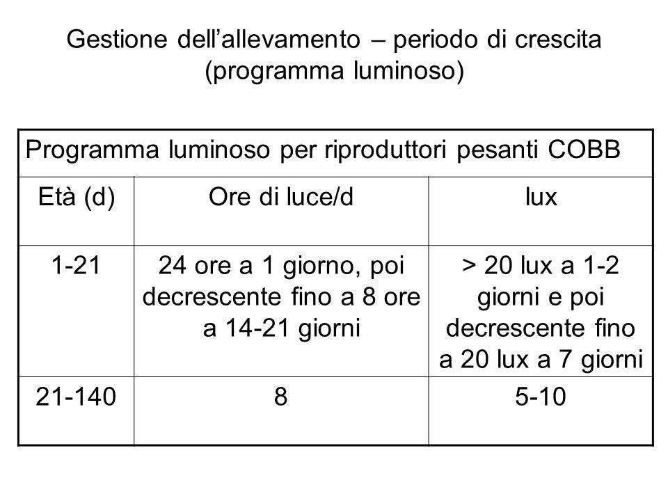 Gestione dell'allevamento – periodo di crescita (programma luminoso)