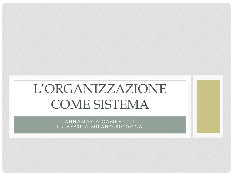 L'Organizzazione come sistema