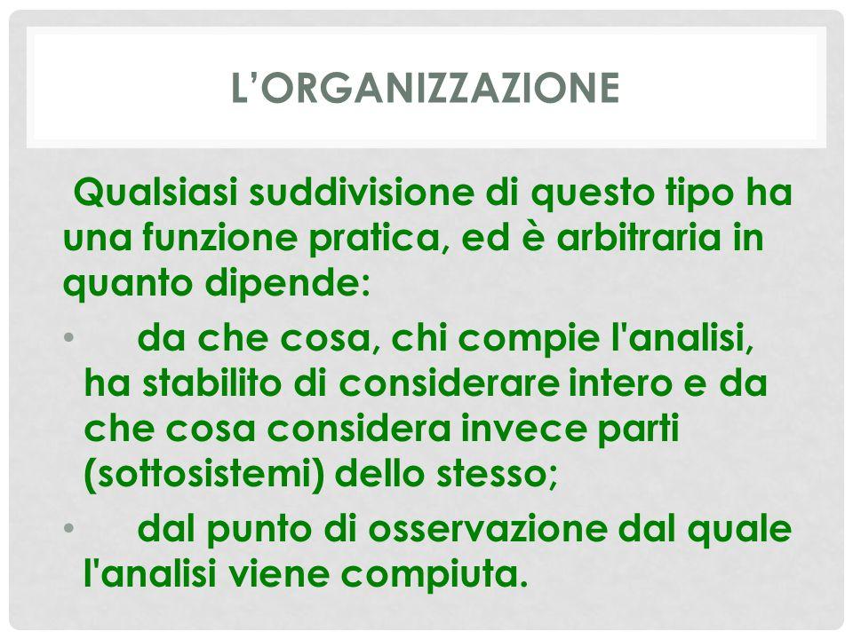 L'ORGANIZZAZIONE Qualsiasi suddivisione di questo tipo ha una funzione pratica, ed è arbitraria in quanto dipende: