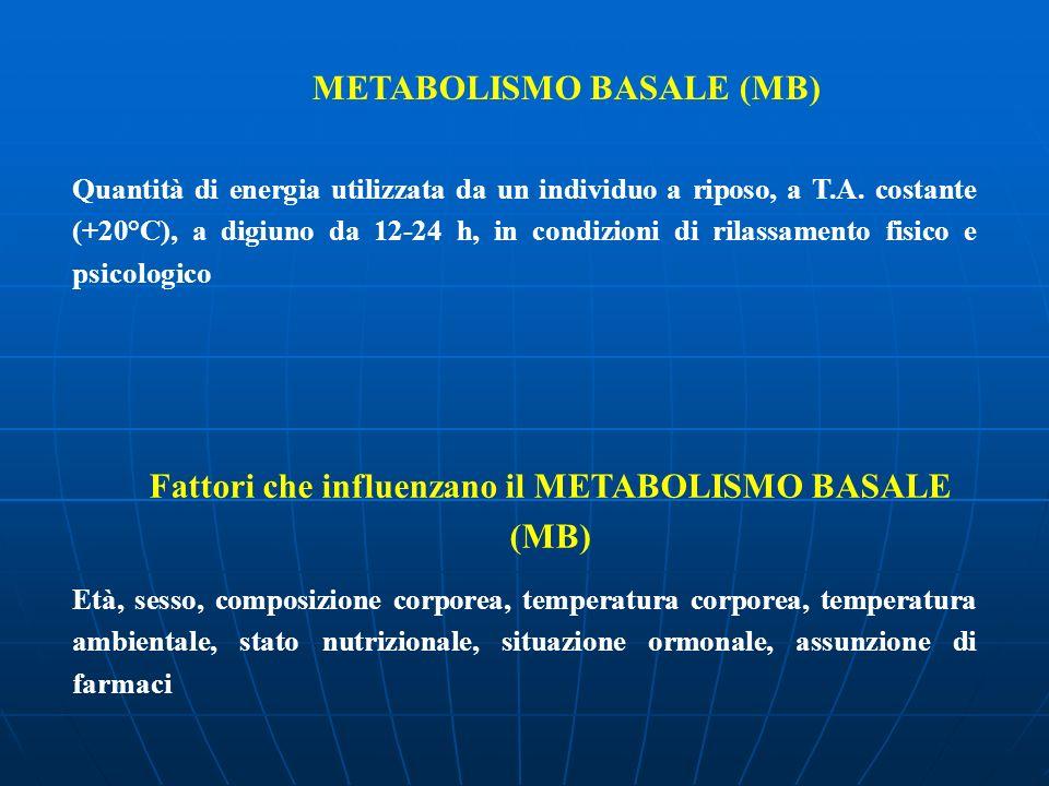 Fattori che influenzano il METABOLISMO BASALE (MB)