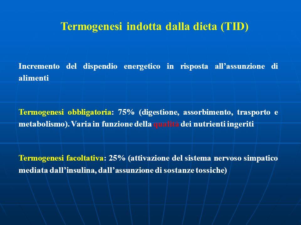 Termogenesi indotta dalla dieta (TID)