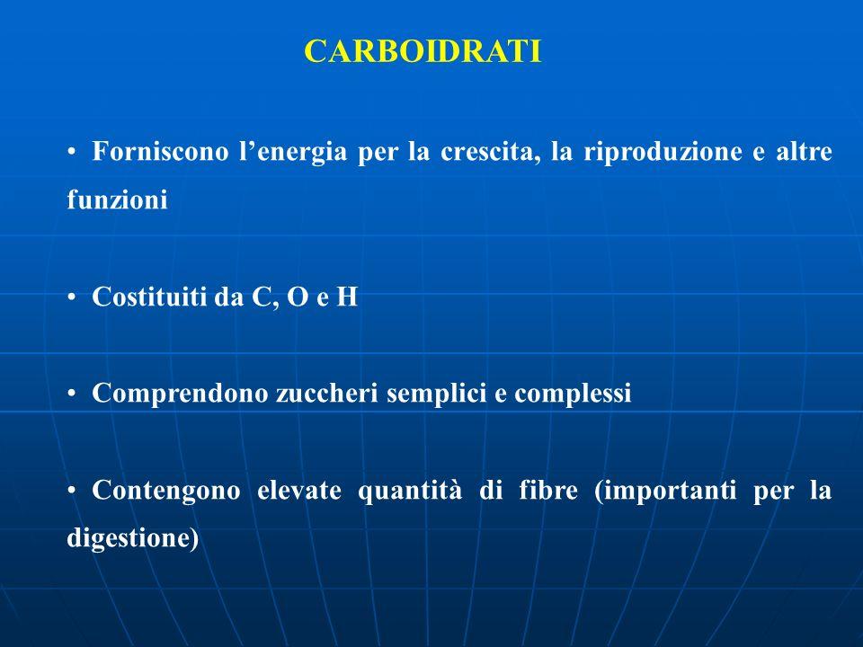 CARBOIDRATI Forniscono l'energia per la crescita, la riproduzione e altre funzioni. Costituiti da C, O e H.