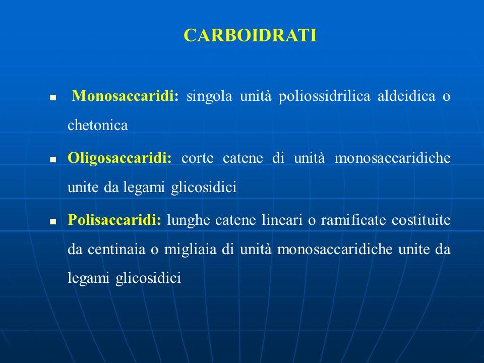 CARBOIDRATI Monosaccaridi: singola unità poliossidrilica aldeidica o chetonica.