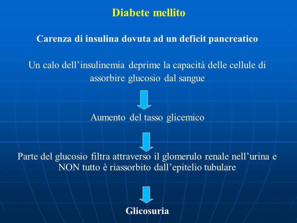 Carenza di insulina dovuta ad un deficit pancreatico