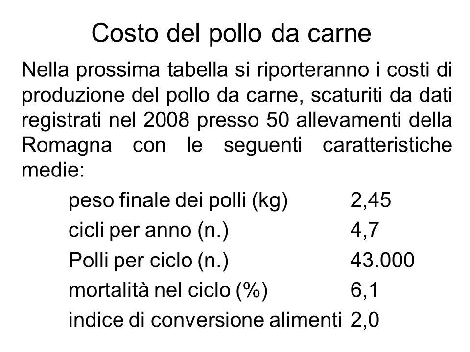 Costo del pollo da carne