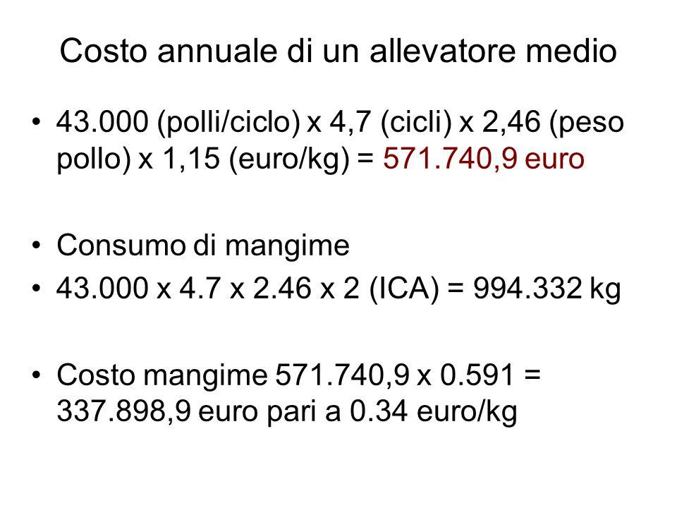 Costo annuale di un allevatore medio