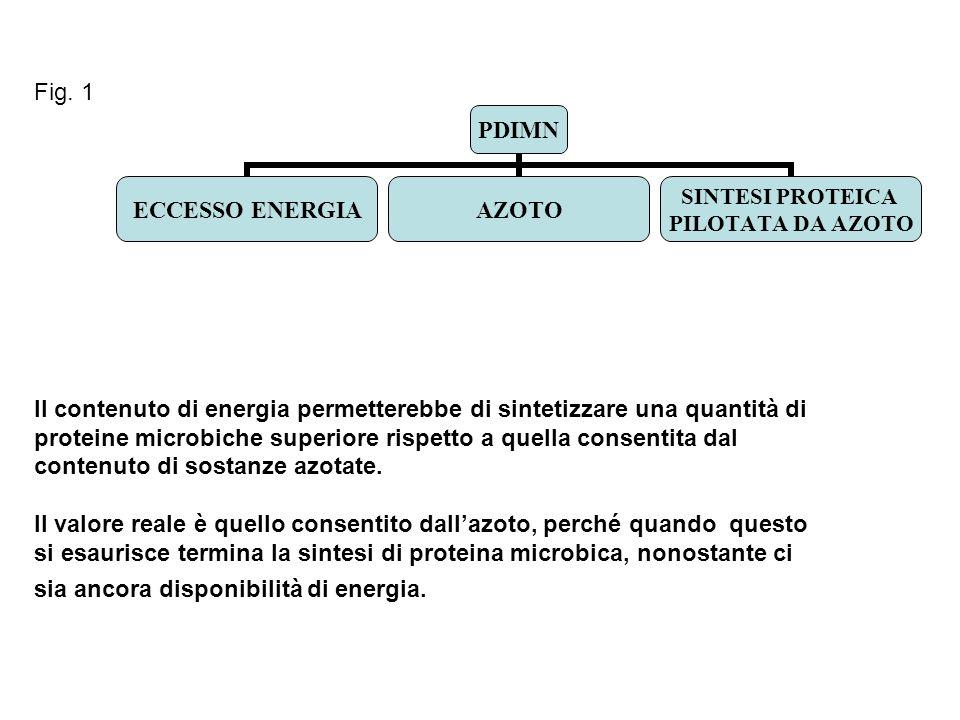 Fig. 1 Il contenuto di energia permetterebbe di sintetizzare una quantità di. proteine microbiche superiore rispetto a quella consentita dal.
