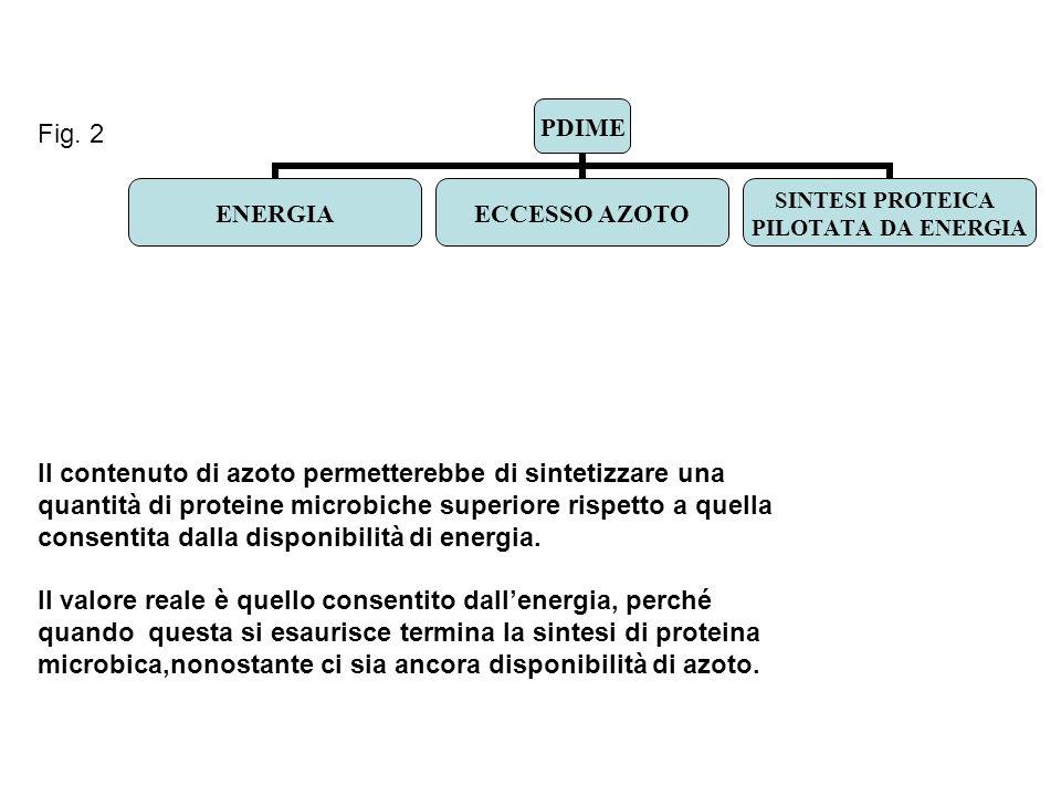 Fig. 2 Il contenuto di azoto permetterebbe di sintetizzare una. quantità di proteine microbiche superiore rispetto a quella.