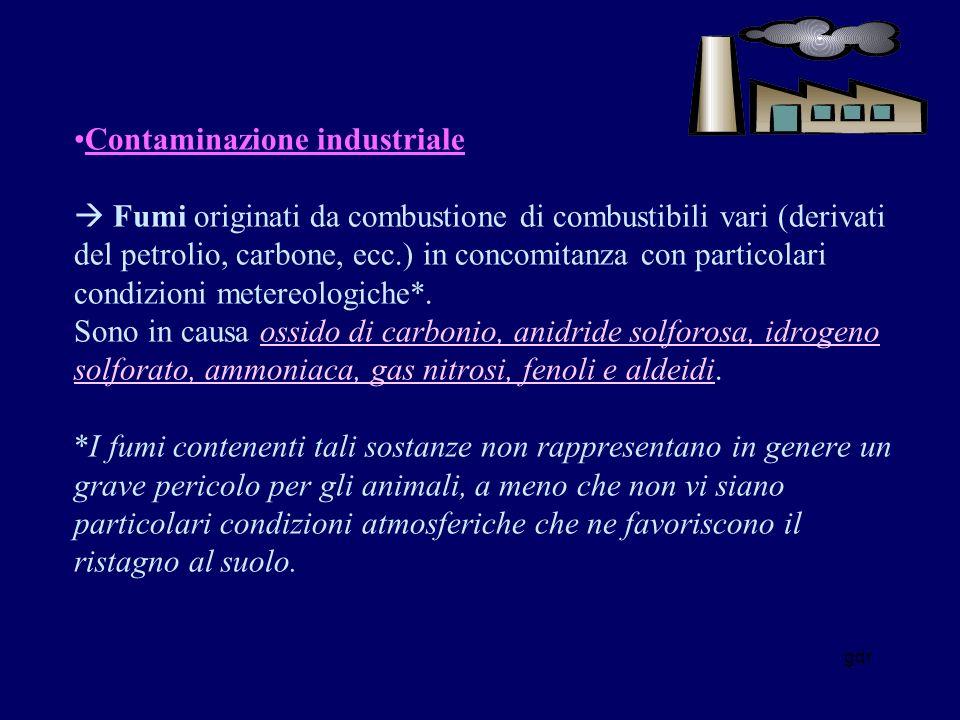 Contaminazione industriale  Fumi originati da combustione di combustibili vari (derivati del petrolio, carbone, ecc.) in concomitanza con particolari condizioni metereologiche*. Sono in causa ossido di carbonio, anidride solforosa, idrogeno solforato, ammoniaca, gas nitrosi, fenoli e aldeidi. *I fumi contenenti tali sostanze non rappresentano in genere un grave pericolo per gli animali, a meno che non vi siano particolari condizioni atmosferiche che ne favoriscono il ristagno al suolo.