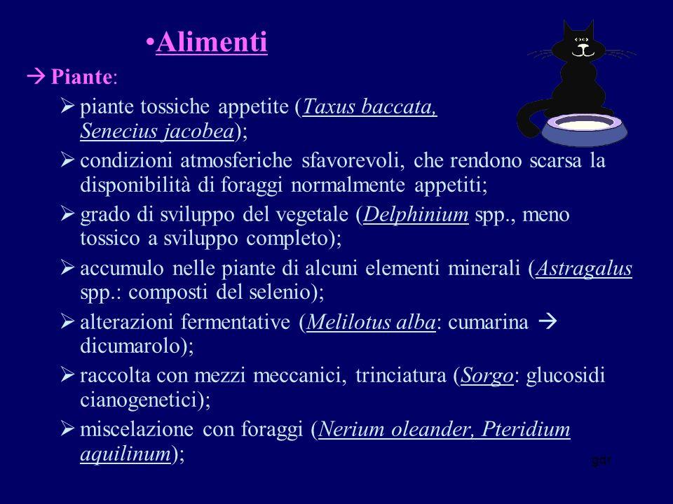 Alimenti Piante: piante tossiche appetite (Taxus baccata, Senecius jacobea);