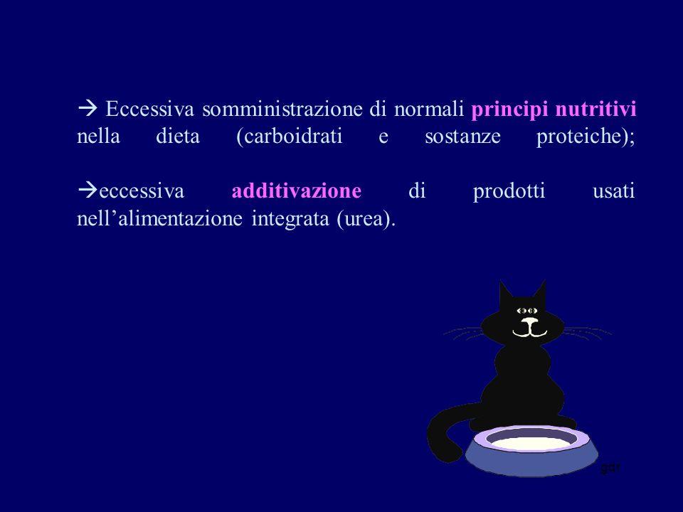  Eccessiva somministrazione di normali principi nutritivi nella dieta (carboidrati e sostanze proteiche); eccessiva additivazione di prodotti usati nell'alimentazione integrata (urea).