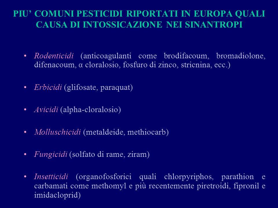 PIU' COMUNI PESTICIDI RIPORTATI IN EUROPA QUALI CAUSA DI INTOSSICAZIONE NEI SINANTROPI