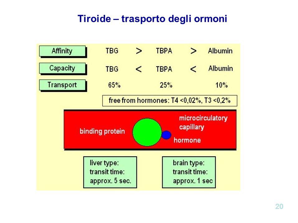 Tiroide – trasporto degli ormoni