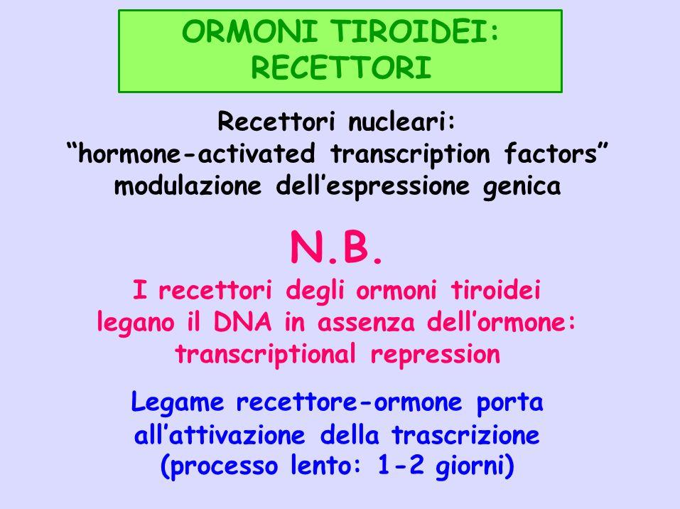 N.B. ORMONI TIROIDEI: RECETTORI Recettori nucleari: