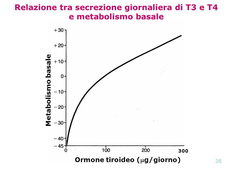 Relazione tra secrezione giornaliera di T3 e T4 e metabolismo basale