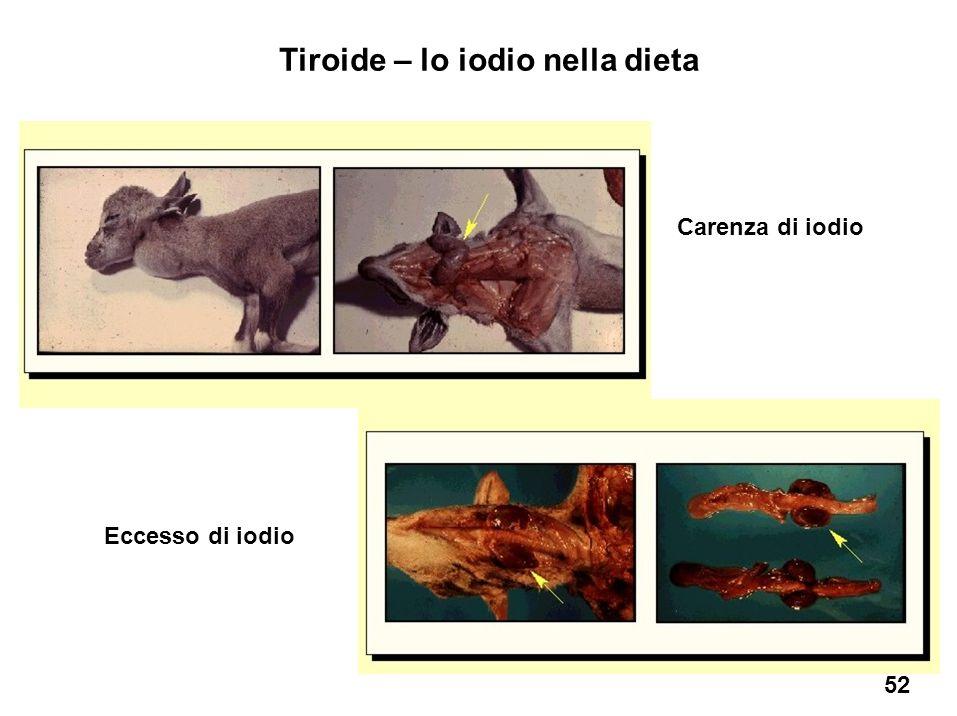 Tiroide – lo iodio nella dieta