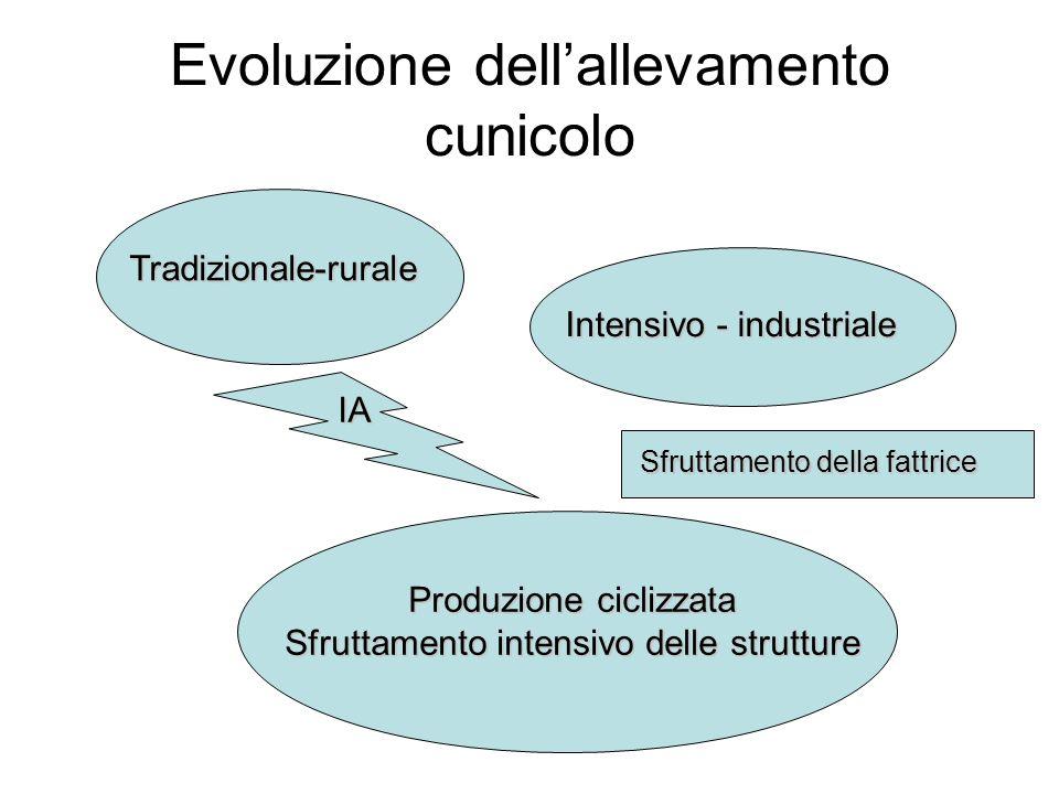 Evoluzione dell'allevamento cunicolo