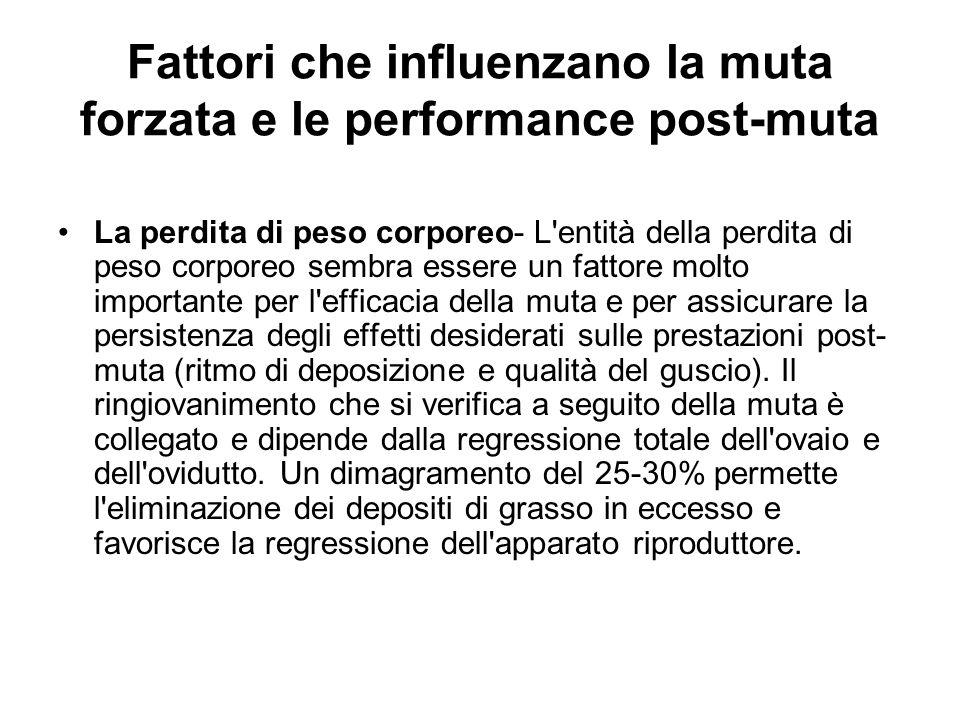 Fattori che influenzano la muta forzata e le performance post-muta