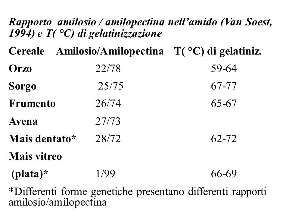 Rapporto amilosio / amilopectina nell'amido (Van Soest, 1994) e T( °C) di gelatinizzazione