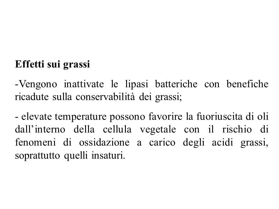 Effetti sui grassi Vengono inattivate le lipasi batteriche con benefiche ricadute sulla conservabilità dei grassi;