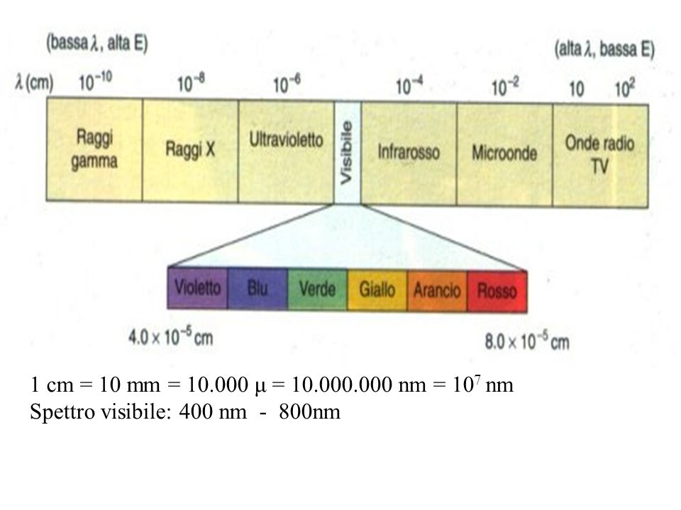 1 cm = 10 mm = 10.000 μ = 10.000.000 nm = 107 nm Spettro visibile: 400 nm - 800nm