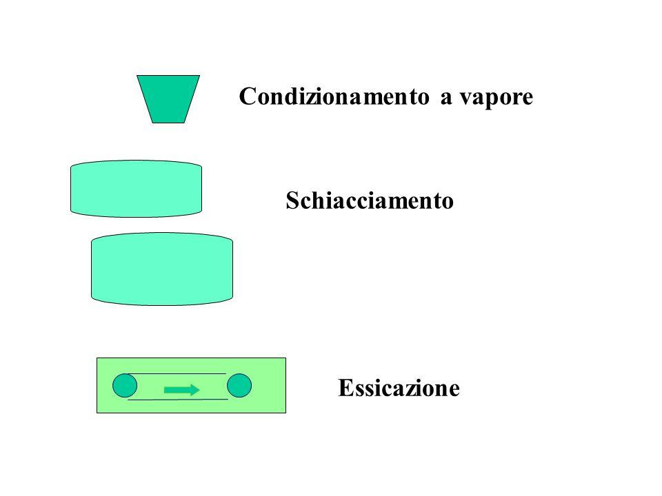 Condizionamento a vapore