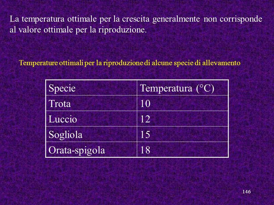 Specie Temperatura (°C) Trota 10 Luccio 12 Sogliola 15 Orata-spigola