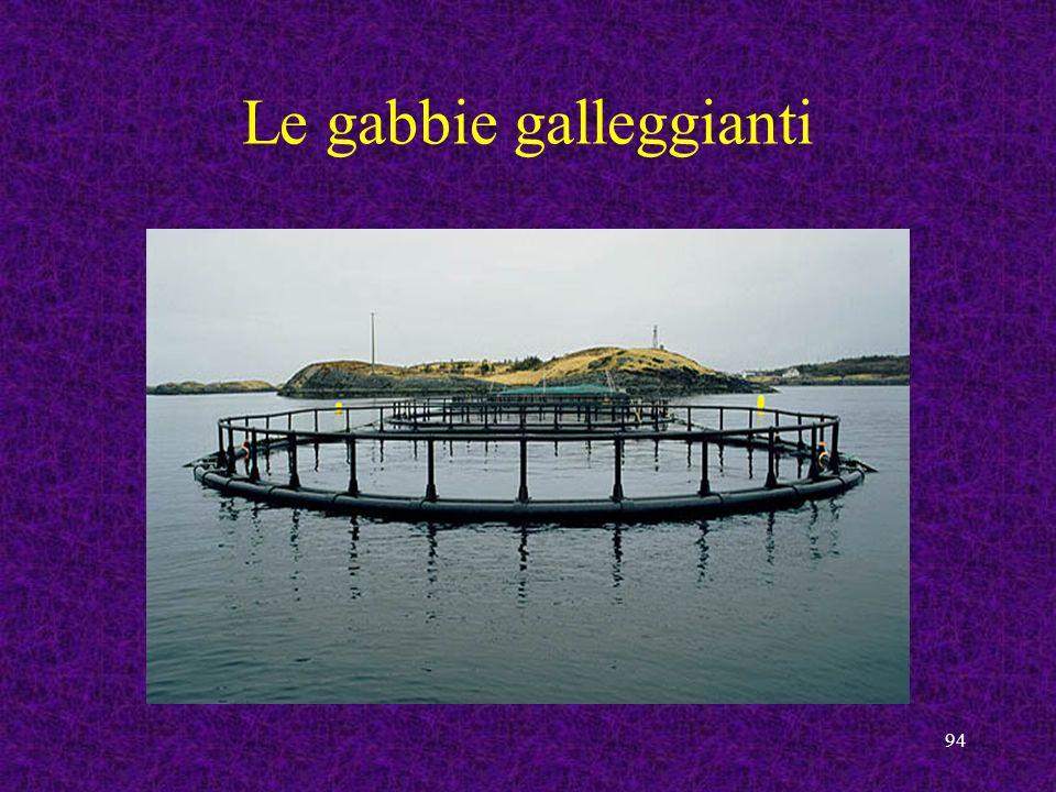 Le gabbie galleggianti